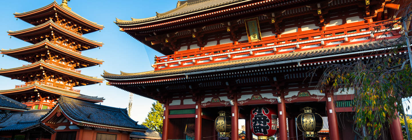 Sensoji Temple Guided Tour