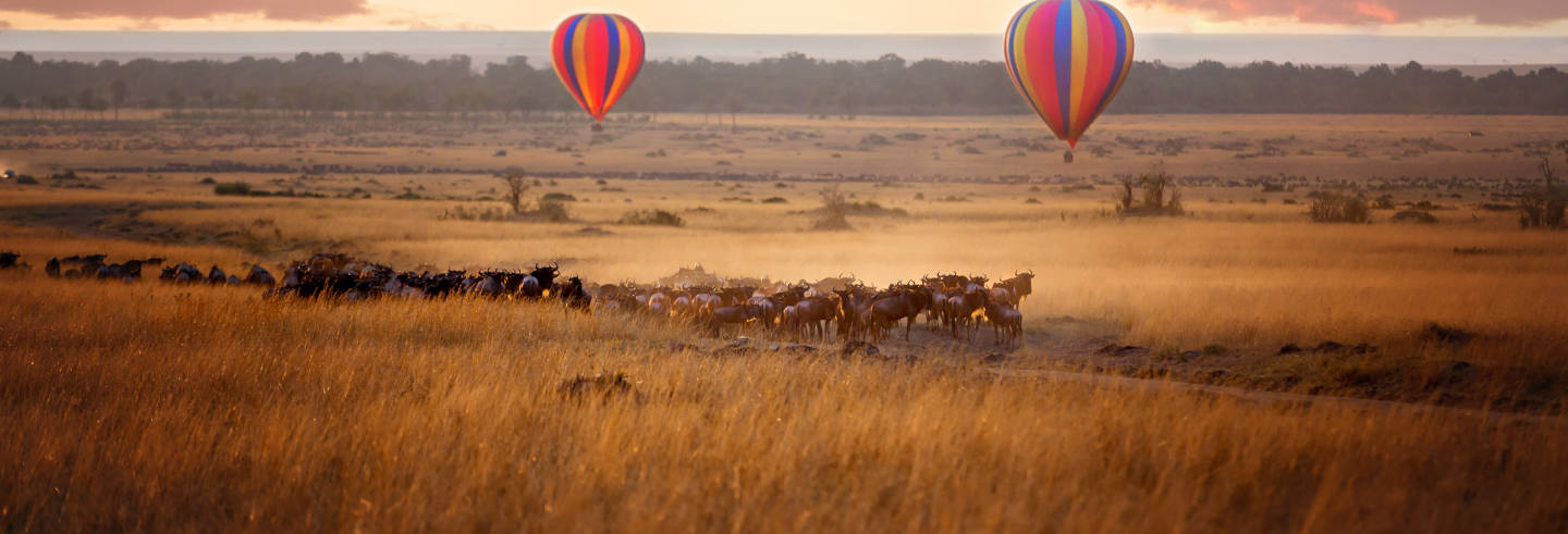 Paseo en globo por Masái Mara