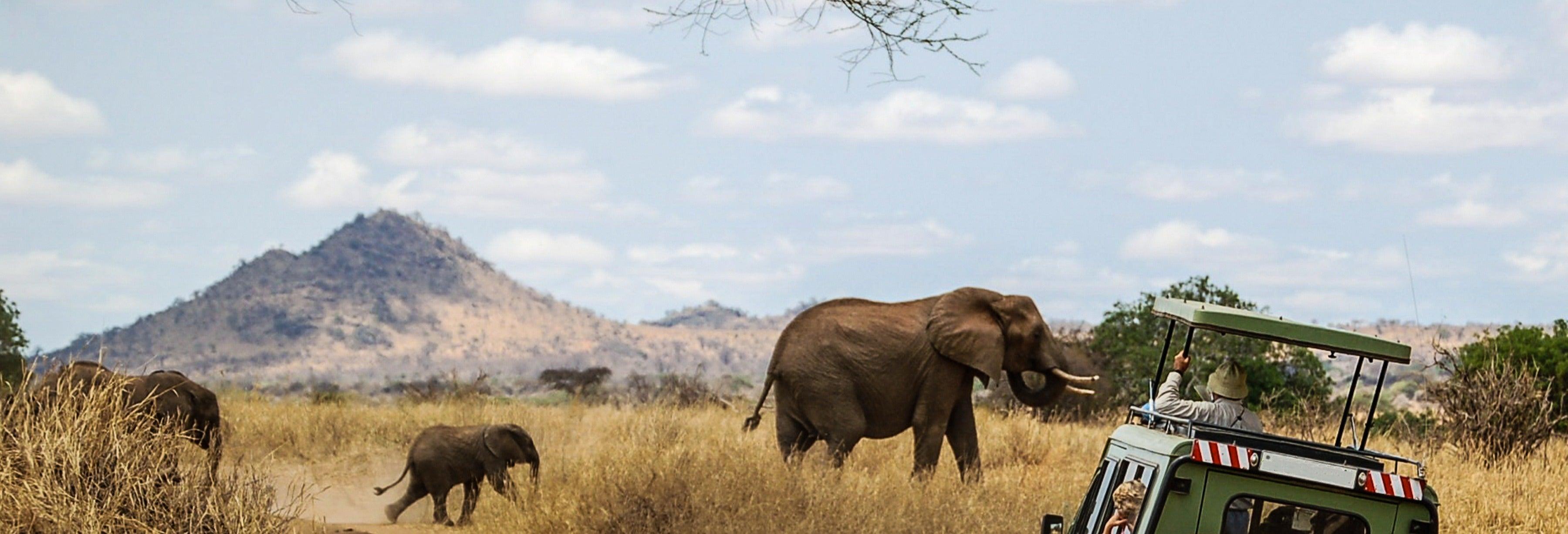 Safari de 3 días por Masái Mara