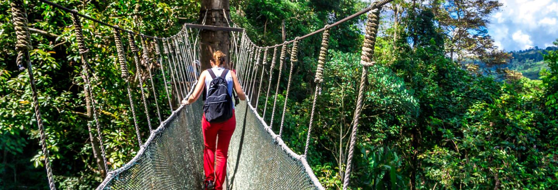 Excursión al Parque Kinabalu y termas de Poring