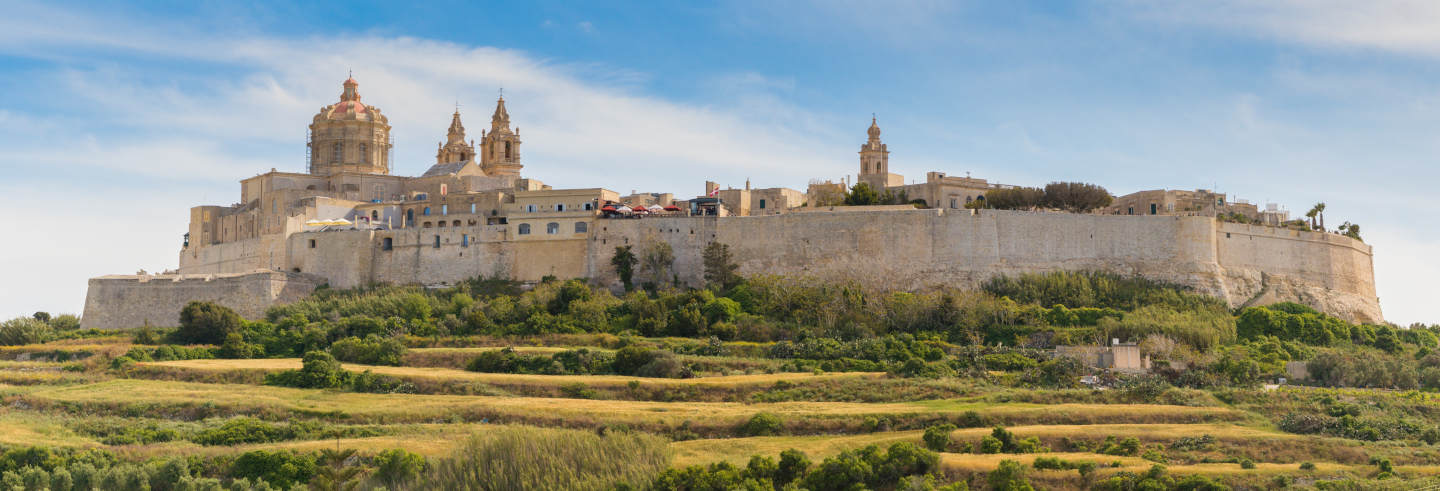 Mdina and Dingli Cliffs Day trip
