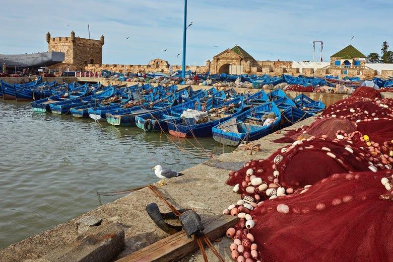 ,Excursión a Essaouira