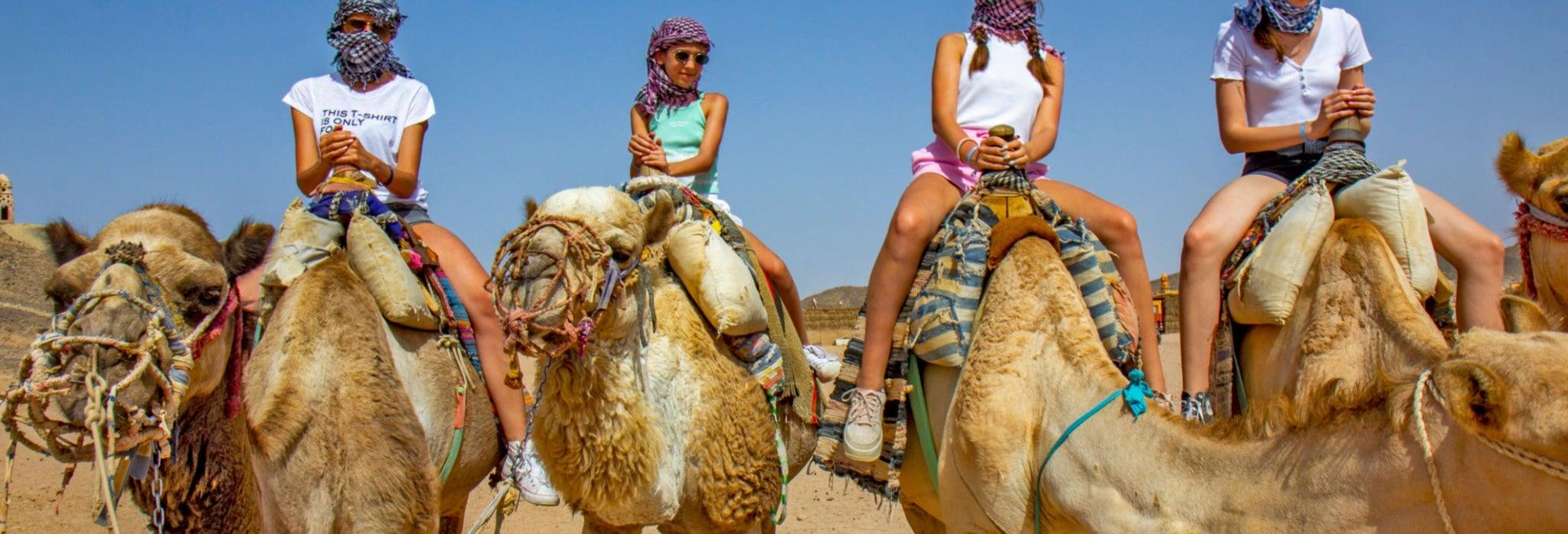 Balade en chameau dans Agadir