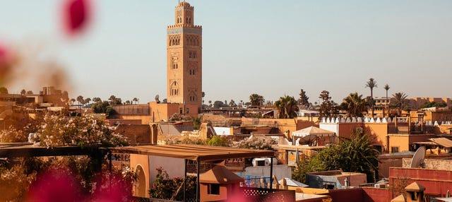 Excursión a Marrakech desde Casablanca