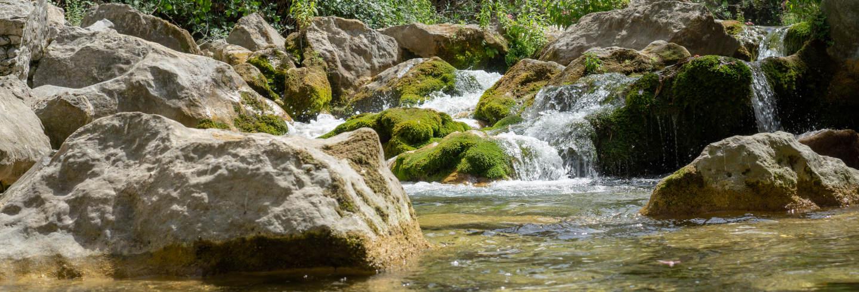 Excursion aux cascades d'Akchour