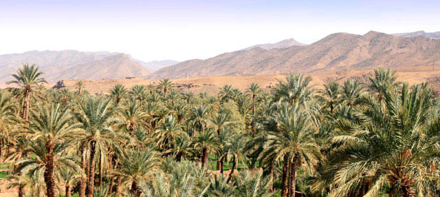 Excursión de 2 días al desierto de Zagora