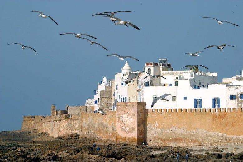 ,En grupos pequeños,Excursión a Essaouira