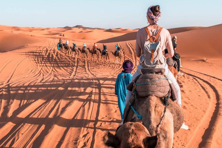 ,Paseo en camello,Excursion desierto Marrakech,Palmeral de Marrakech,Camel ride, quad, air balloon...