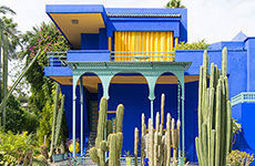 Majorelle Garden Yves Saint Laurent S Garden In Marrakech