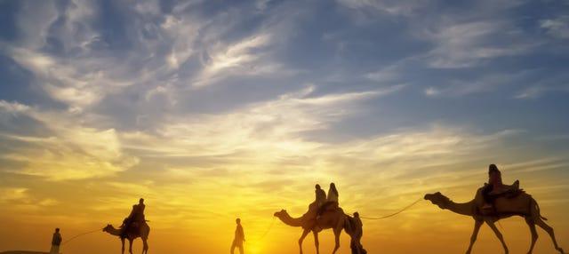 Giro in cammello nel deserto con cena e spettacolo