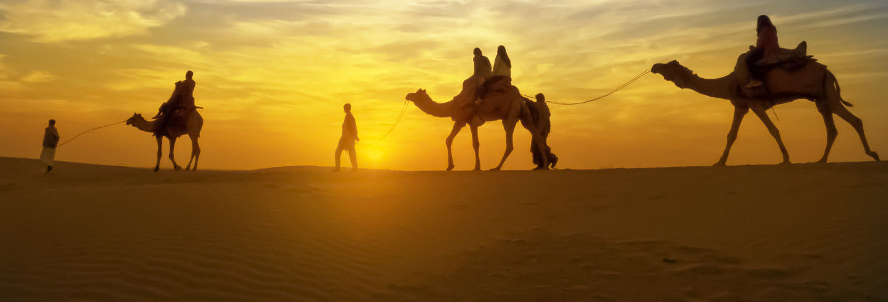 Passeio de camelo pelo deserto com jantar e espetáculo
