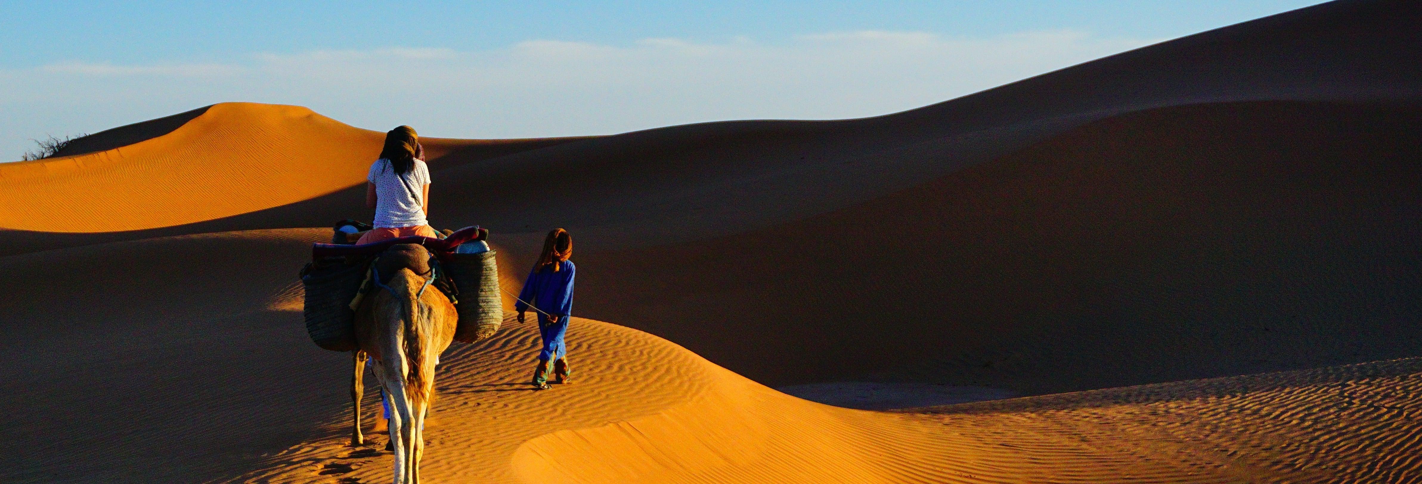 Paseo en camello y noche en el desierto