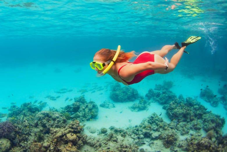 visitante nadando en la isla de enmedio