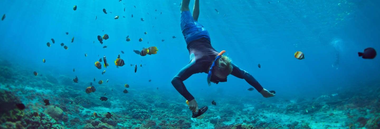 Excursión a Boca Iglesia + Snorkel