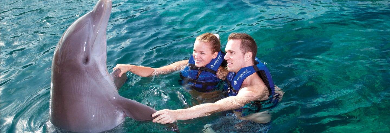 Nado con delfines + Gran Rueda de Cancún