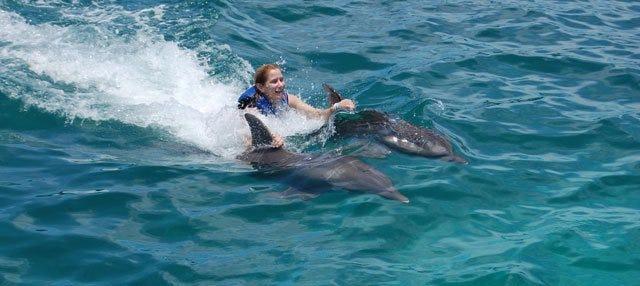 Nado con delfines en Isla Mujeres
