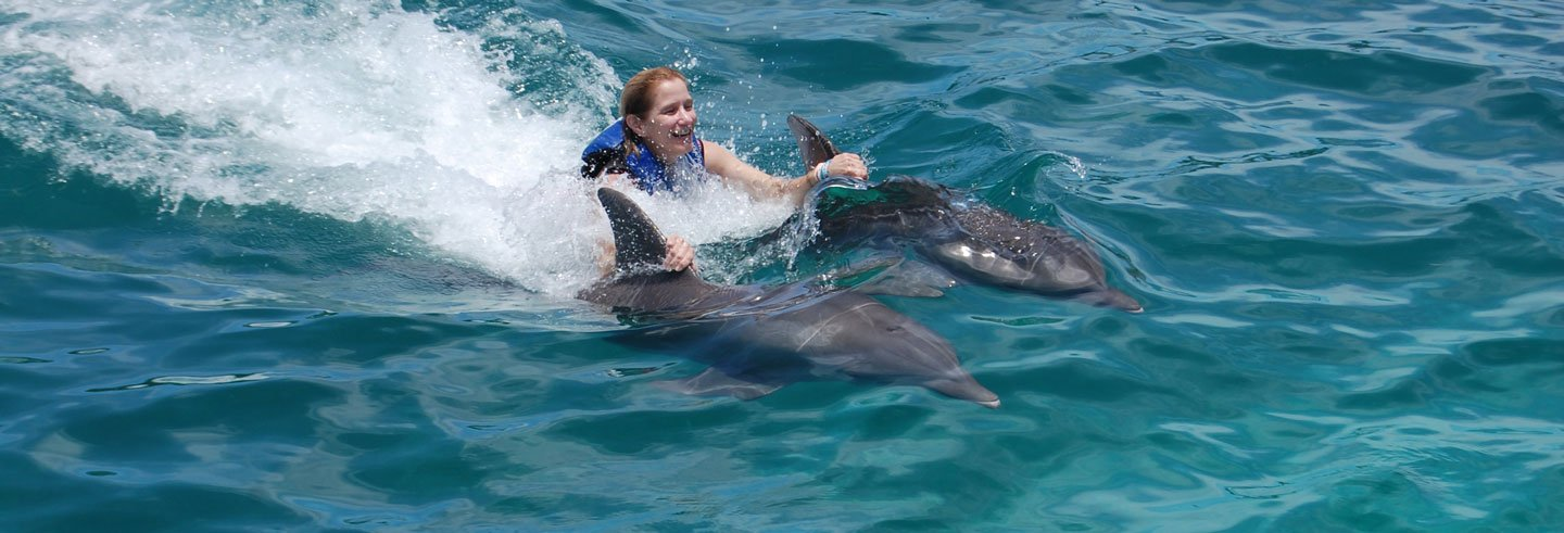 Nage avec les dauphins à Isla Mujeres