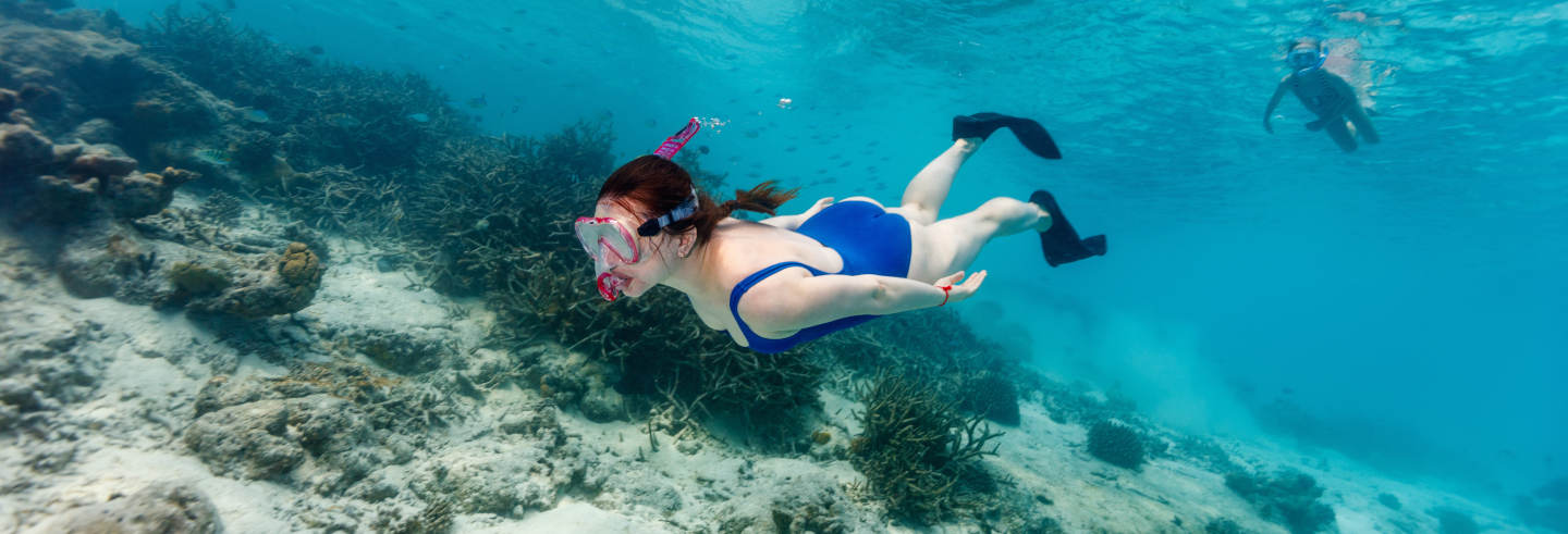 Tulum Snorkel & Cenote Day Trip