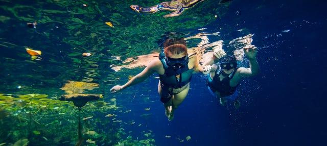 Tour por los cenotes de Cancún