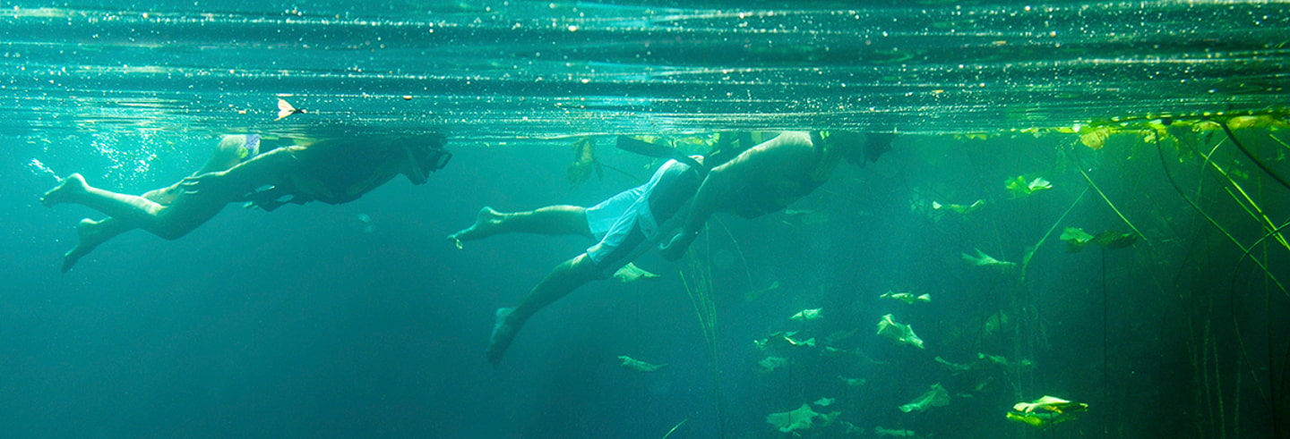 Cancun Cenotes Full-Day Tour