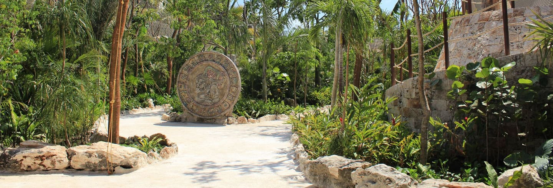 Visita guiada por el Parque Maya