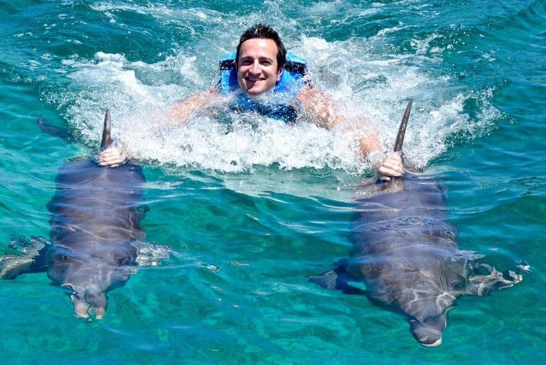 Nado con delfines en Los Cabos - Reserva online en ...