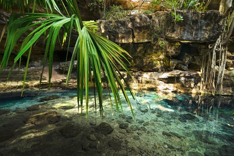 ,Excursión a Cenotes de Cuzamá