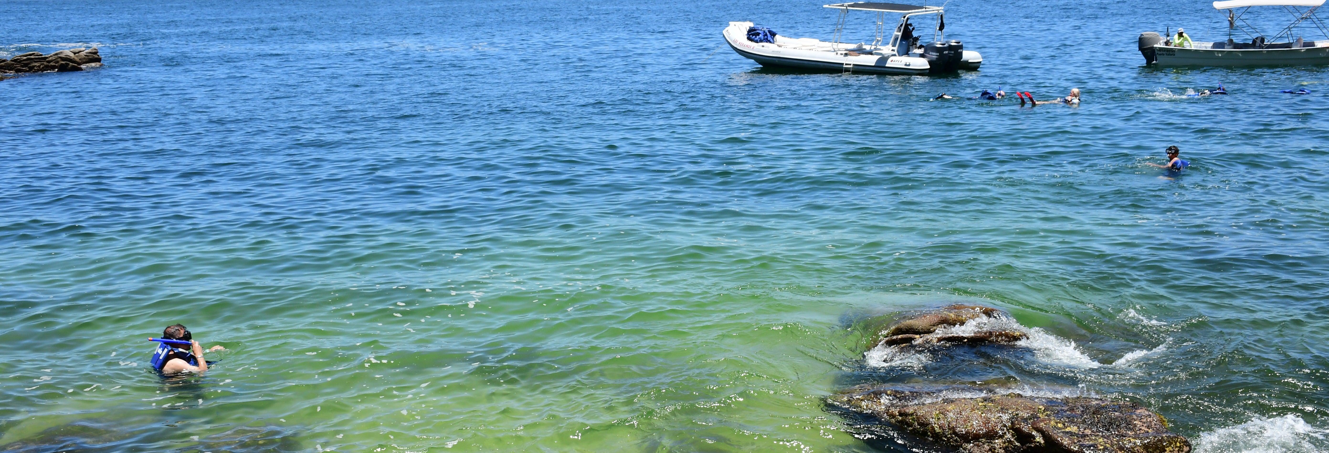 Tour de snorkel con parrillada