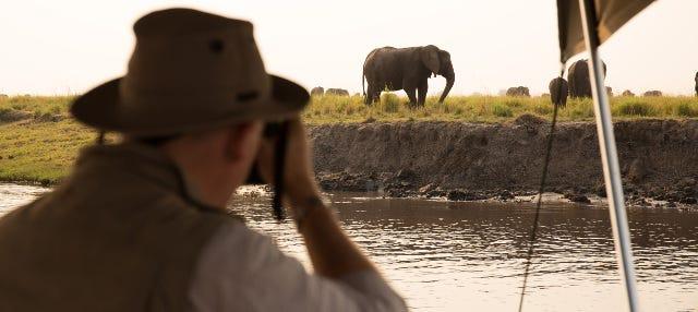 Safari de 8 días por el Delta del Okavango + Cataratas Victoria