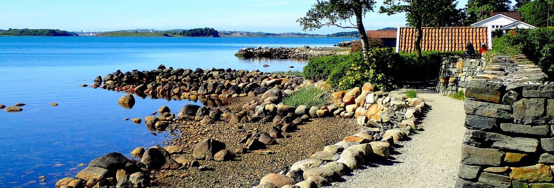 Tour por Hafrsfjord y los lagos en bicicleta