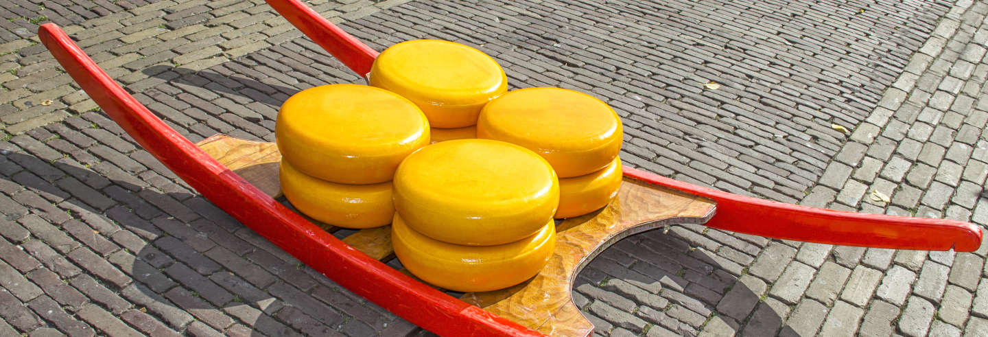 Alkmaar Dutch Cheese Market Tour