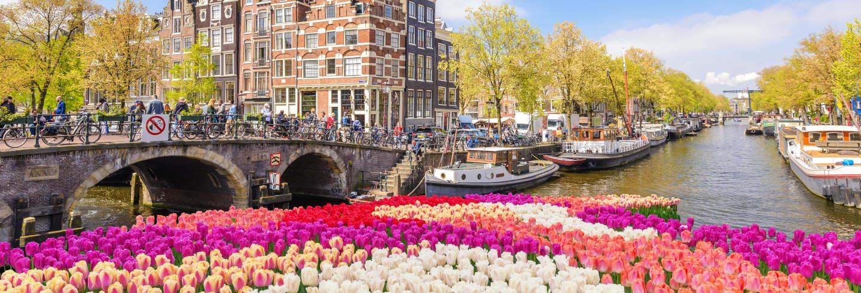 Excursão privada a Zaanse Schans, Edam, Volendam e Marken