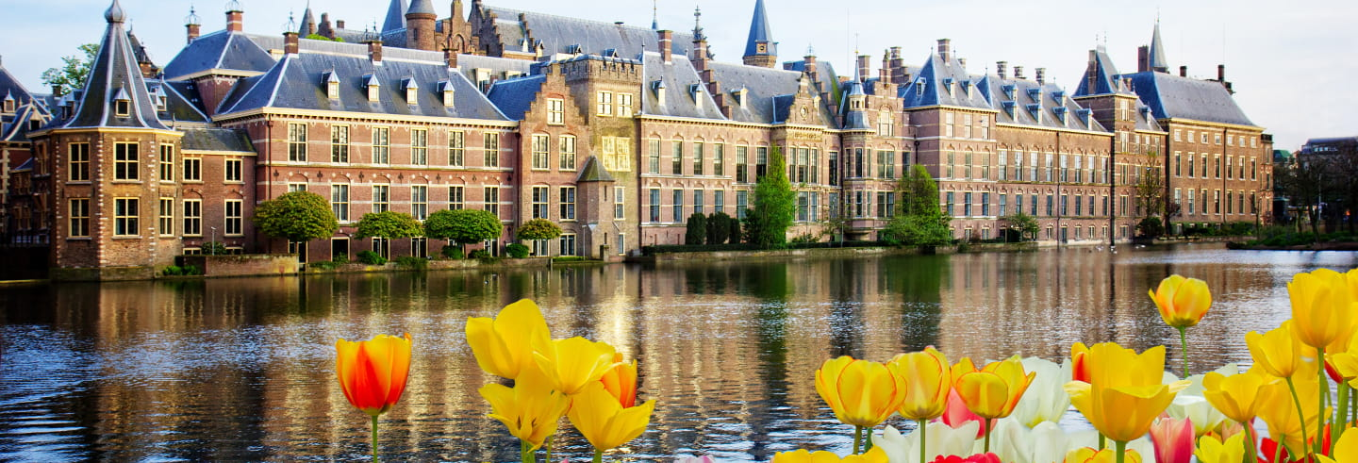 Excursión a Róterdam y La Haya