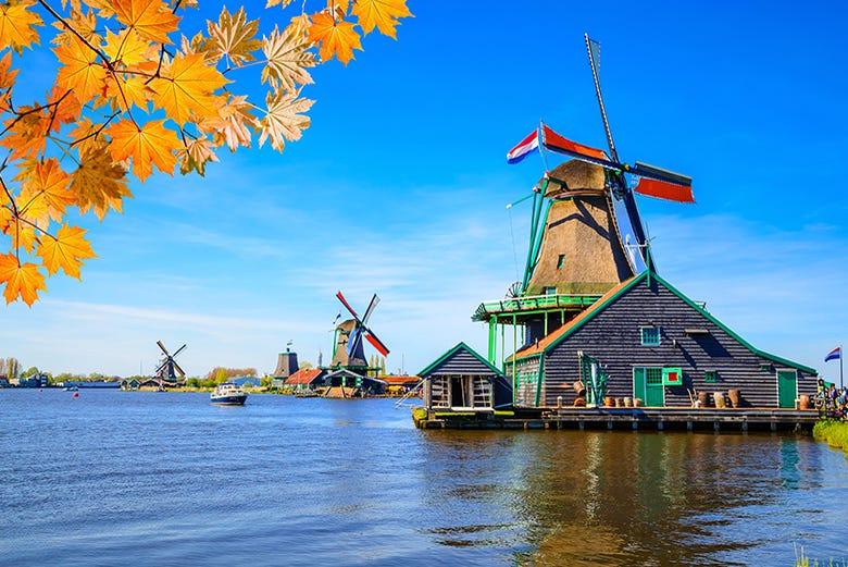 ,Excursion to Marken,Excursión a Volendam,Excursion to Volendam,Volendam + Zaanse Schans + Marken,Excursión a Volendam, Edam y Marken,Zaanse Schans + Volendam + Edam + Marken,Excursión a Molinos de Zaanse Schans,Volendam + Edam + Marken,Excursion to Zaanse Schans Windmills,Excursión a Edam,Excursion to Edam,Excursión a Marken