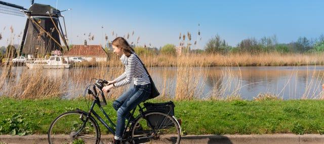 Tour en bicicleta por la campiña holandesa