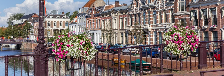 Visita guiada por Haarlem