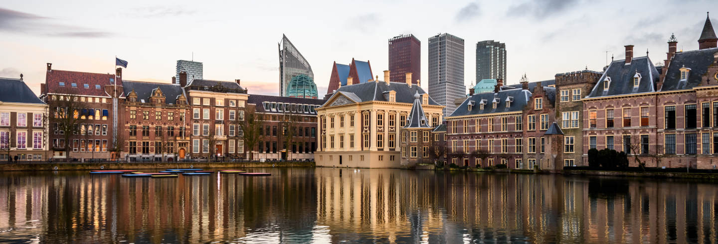 Private Tour of The Hague
