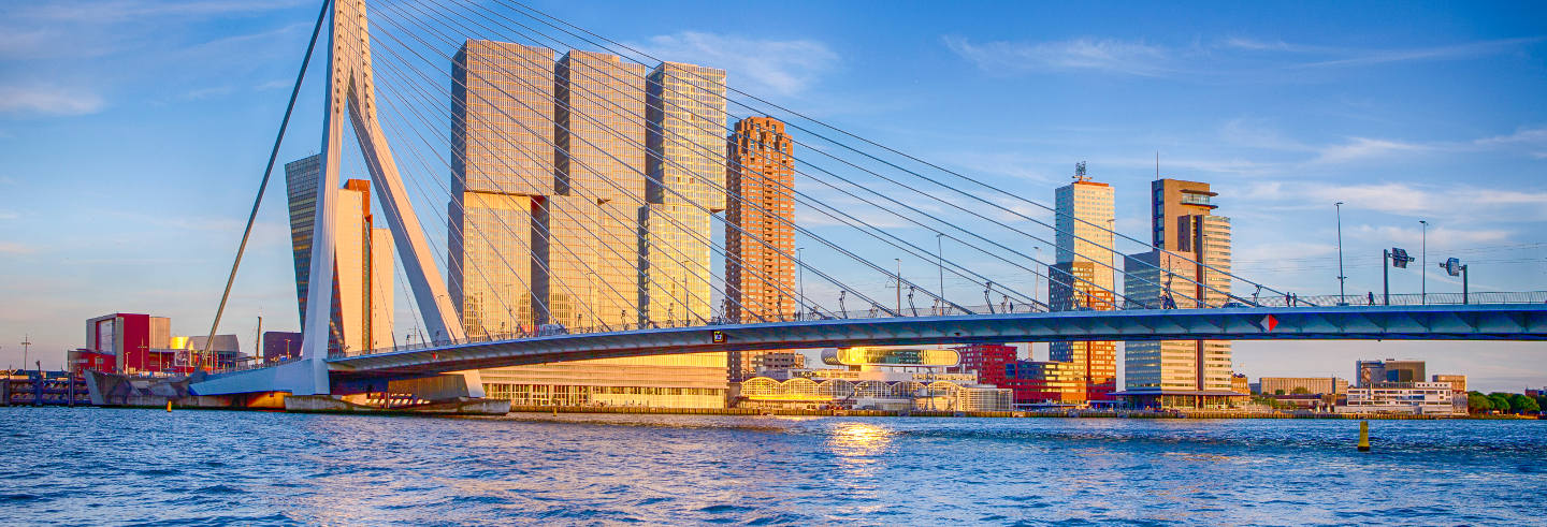 Private Tour of Rotterdam