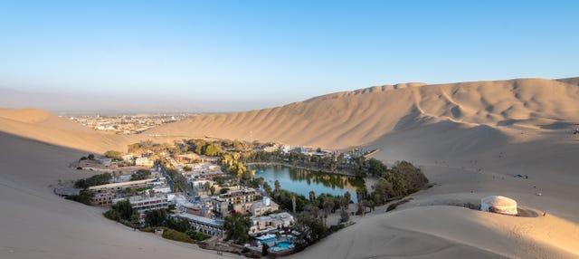 Excursión a Ica y Huacachina