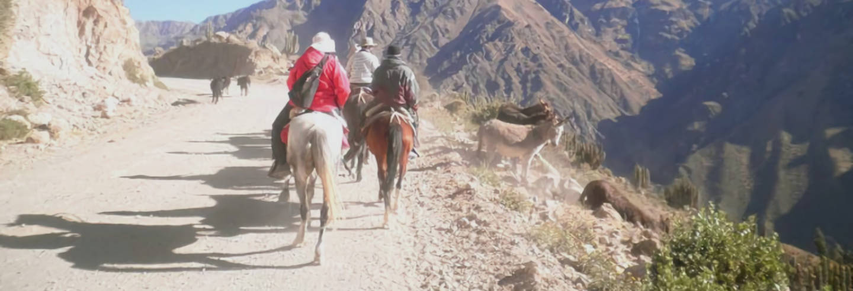 Paseo a caballo por el Cañón del Colca