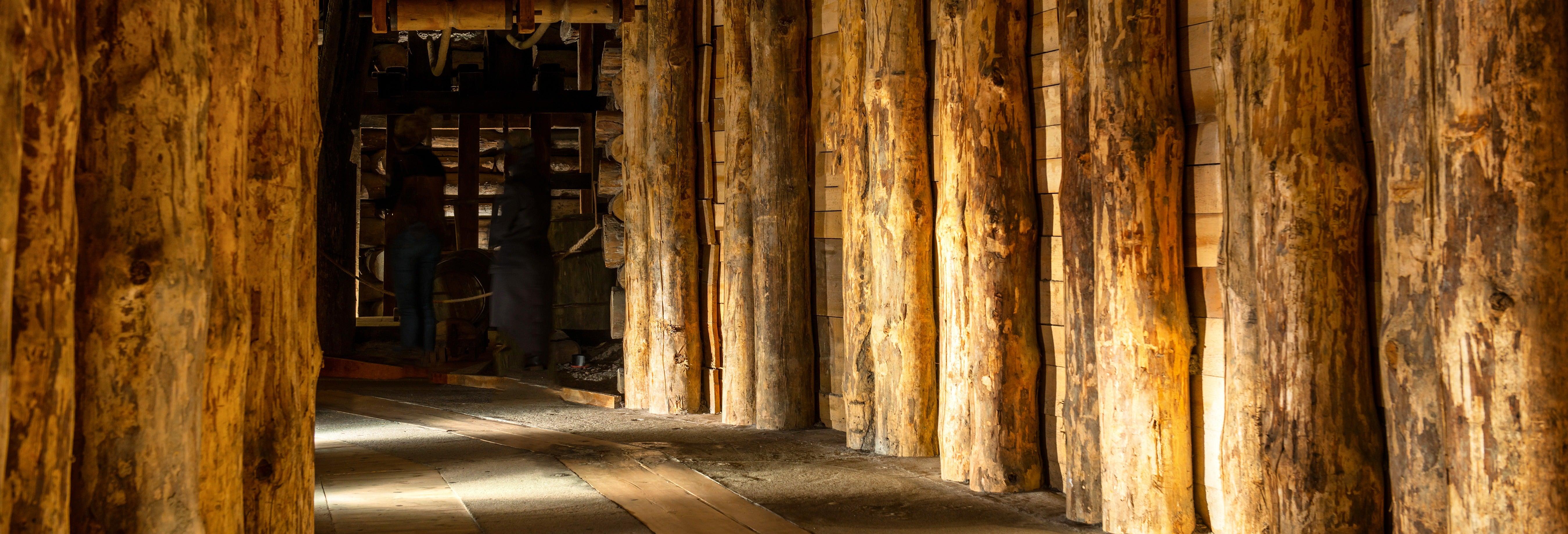 Excursion à la Mine de Sel de Wieliczka