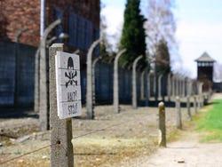 ,Con Auschwitz Birkenau,Campo de concentración de Auschwitz,Auschwitz Birkenau Museum and Memorial ,Mina de sal Wieliczka,Wieliczka Salt Mines