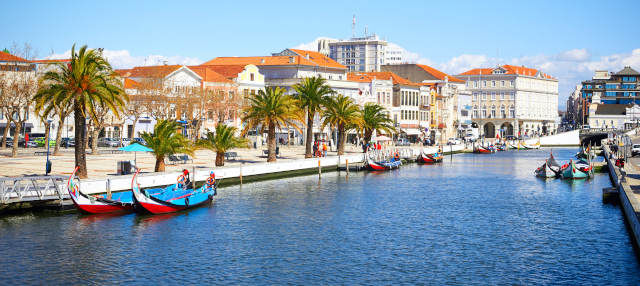 Tour por Aveiro + Paseo en barco moliceiro