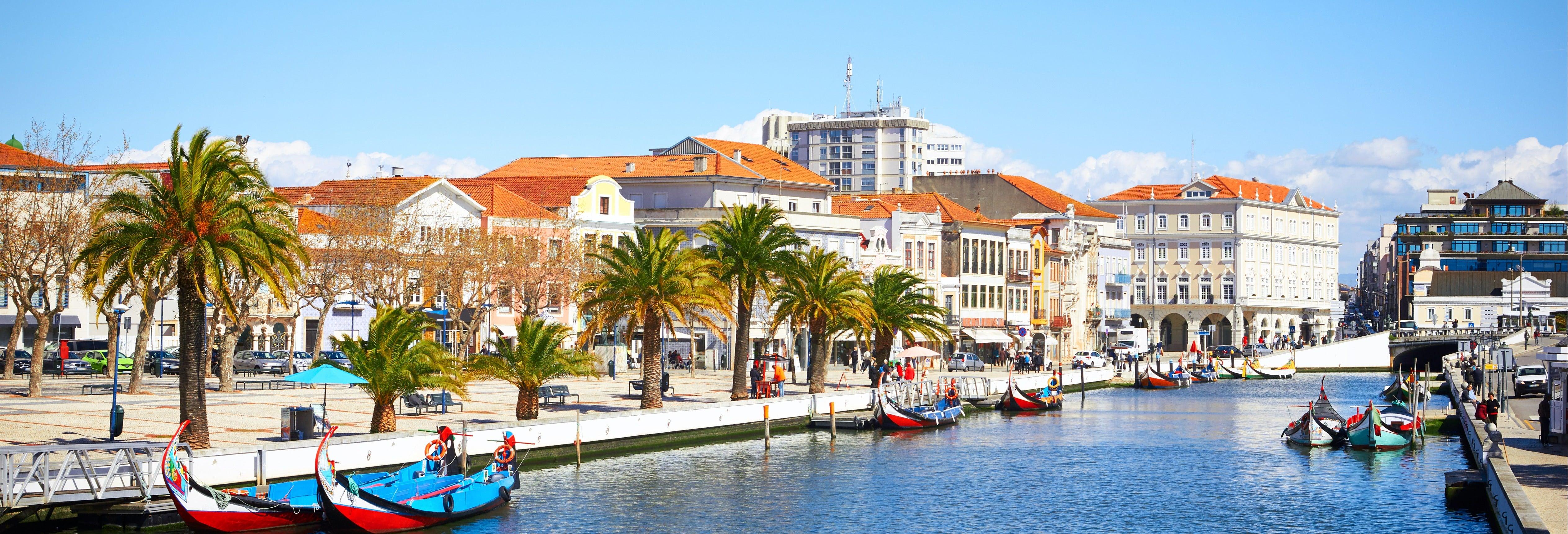 Aveiro City Tour & Moliceiro Cruise
