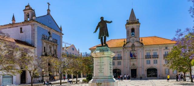 Visita guiada por Aveiro