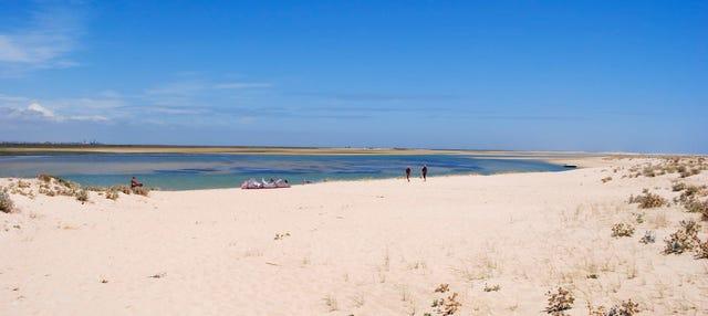 Paseo en barco por las islas Deserta y Farol