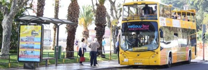 Ônibus turístico de Funchal