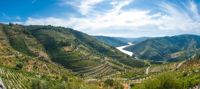 Visite de la région du Douro