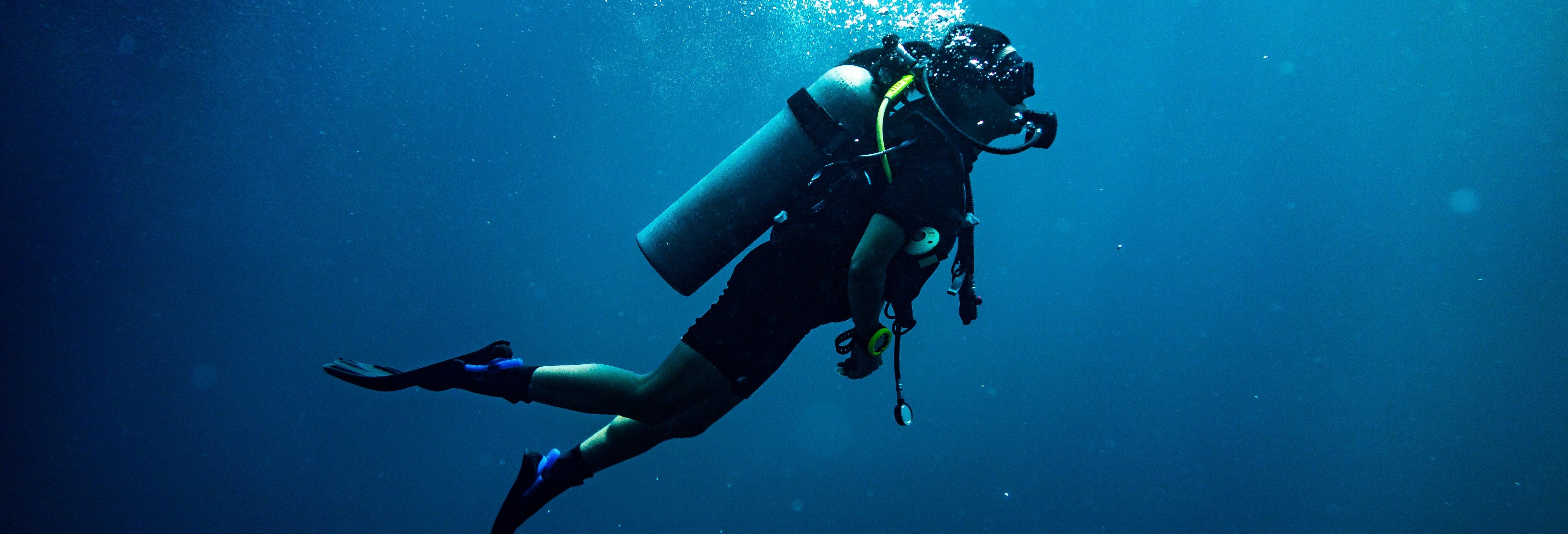 Beginners Dive on Berlenga Grande