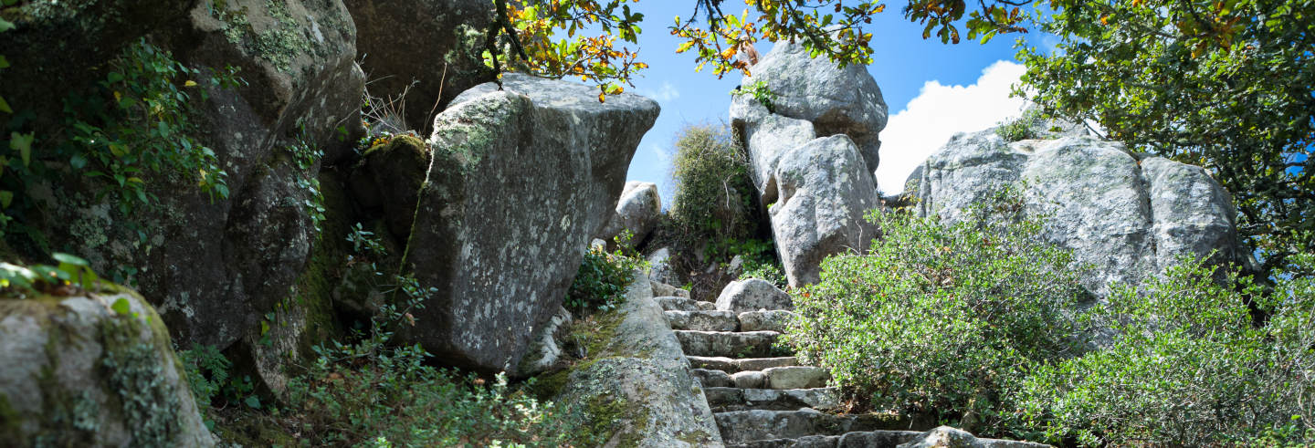 Hiking in the Sintra Natural Park